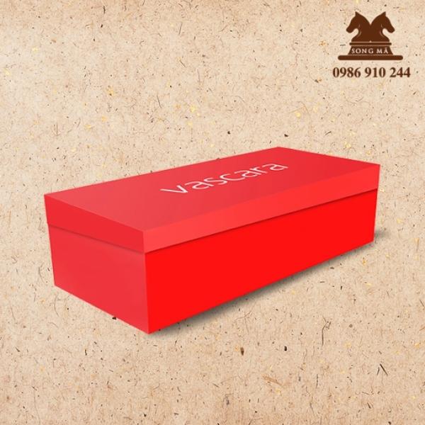 Mẫu đựng giầy - HDG04