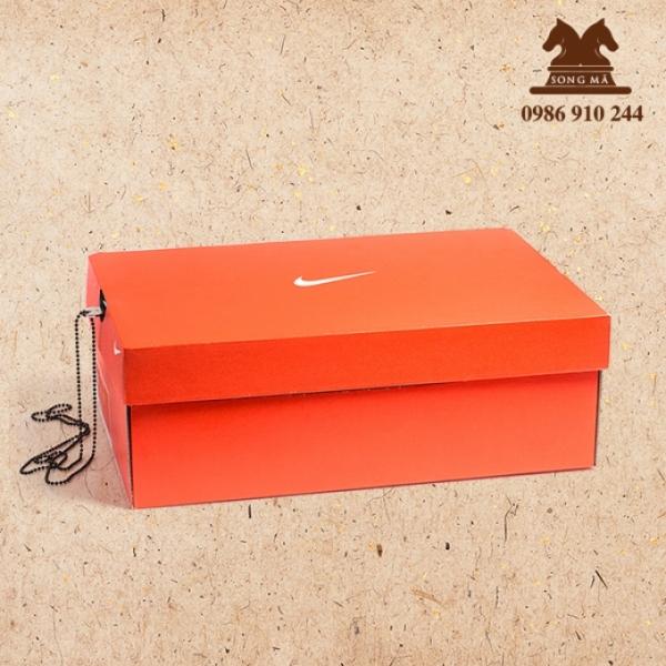 Mẫu đựng giầy - HDG07