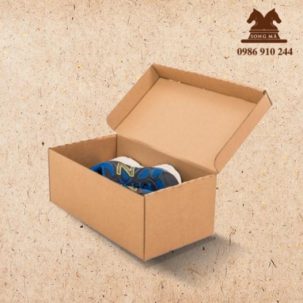 Mẫu đựng giầy - HDG09