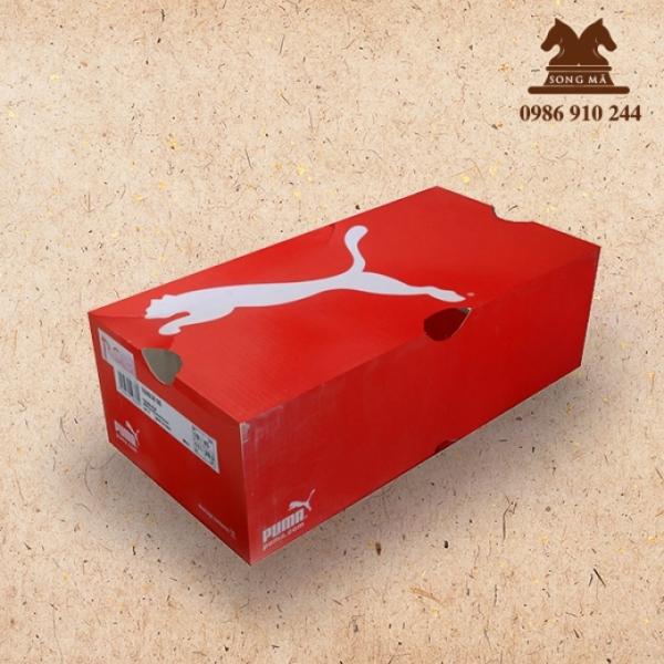 Mẫu đựng giầy - HDG13