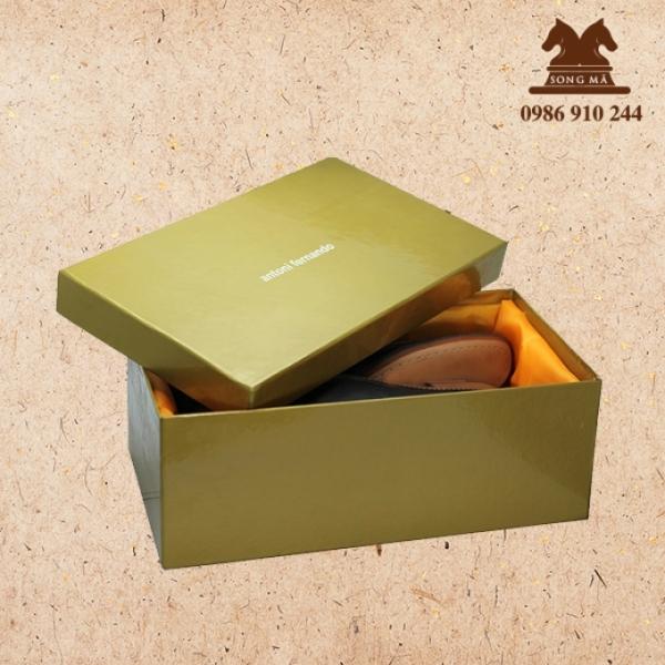 Mẫu đựng giầy - HDG15