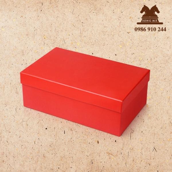 Mẫu đựng giầy - HDG19