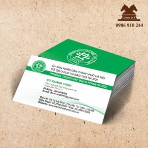 Mẫu card CVS02