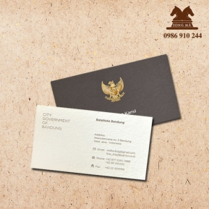 Mẫu card CVS17