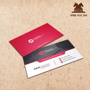 Mẫu card CVS24