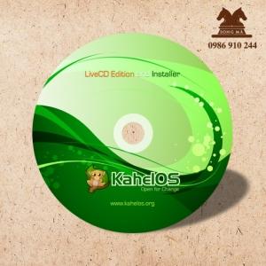 Mẫu nhãn đĩa DIS13
