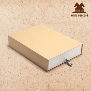 Mẫu hộp - HCL19