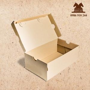Mẫu đựng giầy - HDG10