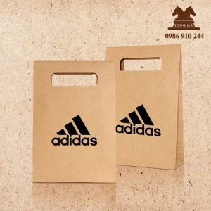 Mẫu túi giấy TG13