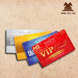 Mẫu thẻ nhựa TN08